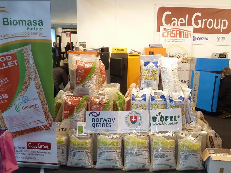 V stava italia legno energia 2015 biopel v roba for Italia legno energia